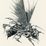 mec fly
