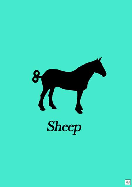 Sheep72